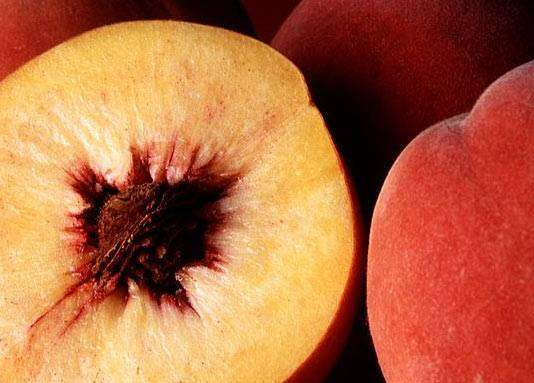 Mystilla Trauben Obstbrand aus alter Obstsorte