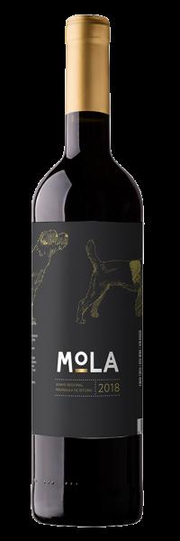 Mola tinto 2017 aus Setubal